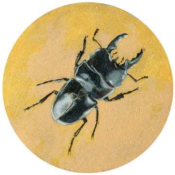 Mark Gleason - Beetle