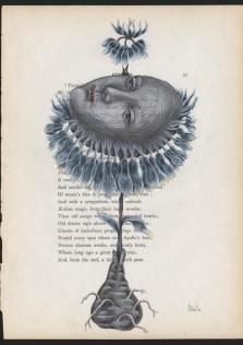 Donna Abbate - A Spoken Flower page 33