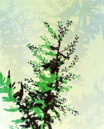 Doug Fogelson - Plant, 2