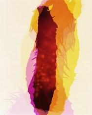 Doug Fogelson - Blowfish