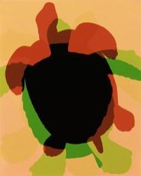 Doug Fogelson - Turtle