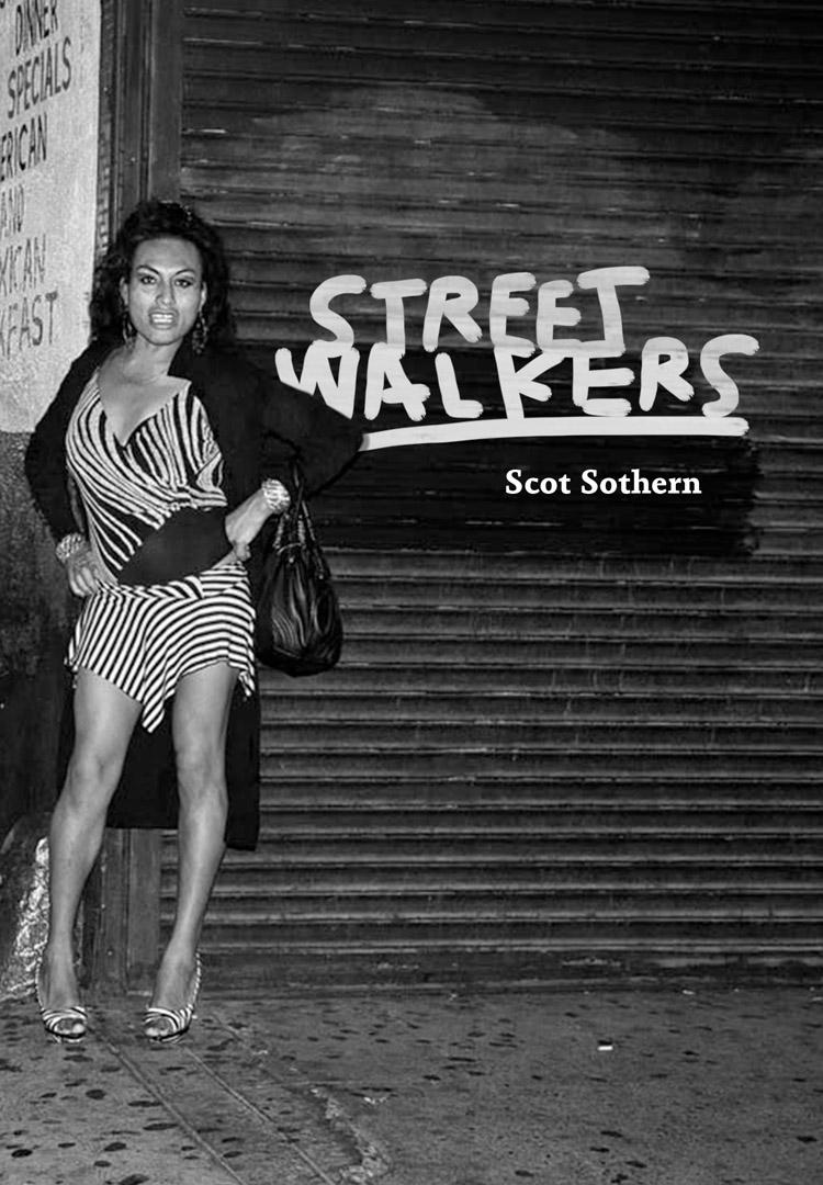 StreetWalkers_CVR.indd