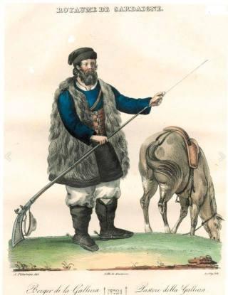 Pittaluga-Levilly Pastore della Gallura 1826