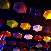 Demander pardon : une manière d'ouvrir le parapluie ?...