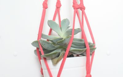 La suspension pour plante