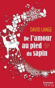 de-l-amour-au-pied-du-sapin-557037-250-400-189x300
