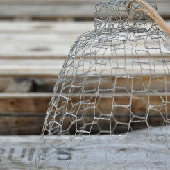 cloche-grillage-galvanise-bell-wire-netting (2)