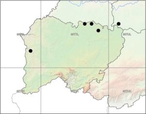 Salmanca censo 2013