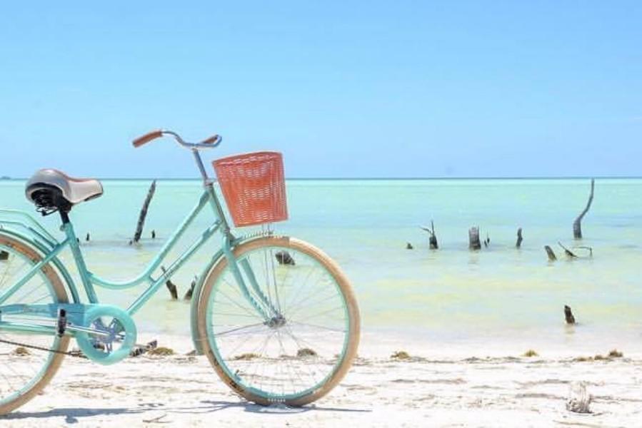 bikes-holbox-bike-on-the-beach