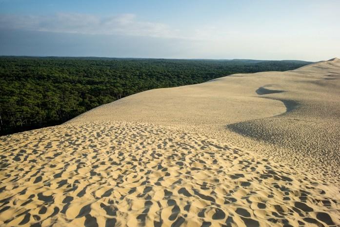 Au sommet de la dune du Pilat