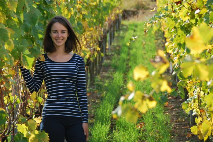 Découvrir Eguisheim - route des vins d'Alsace