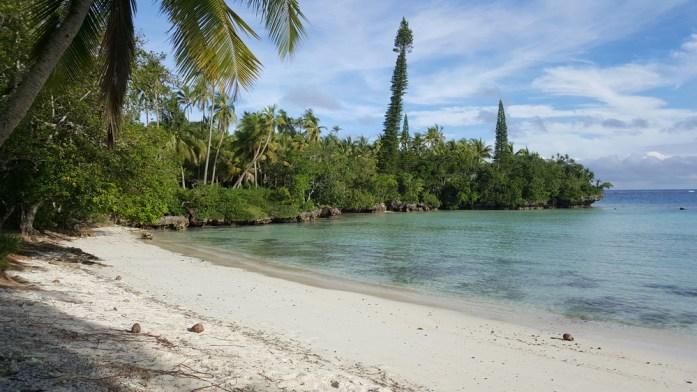 Îles de Nouvelle Calédonie - baie des tortues à Lifou