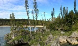 Baie des tortues à Maré - Nouvelle Calédonie