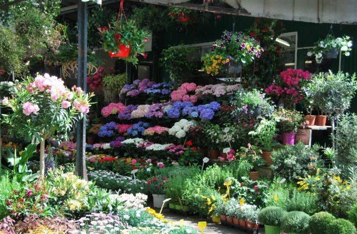 Paris au vert - fleuriste du marché Elisabeth II