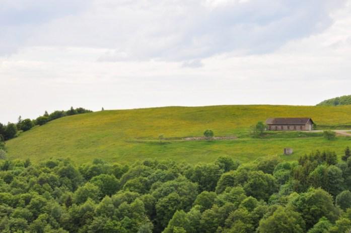 Du Haut Koenigsbourg à la route des Crêtes - la ferme du Markstein en été