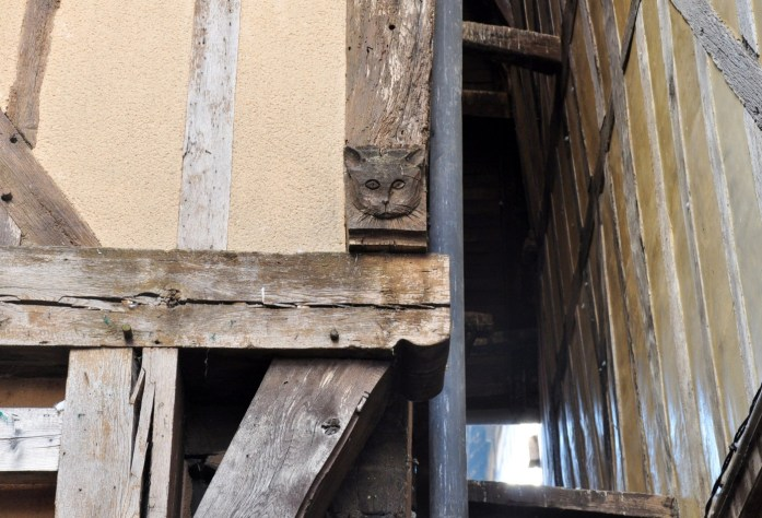 Troyes - ruelle des chats