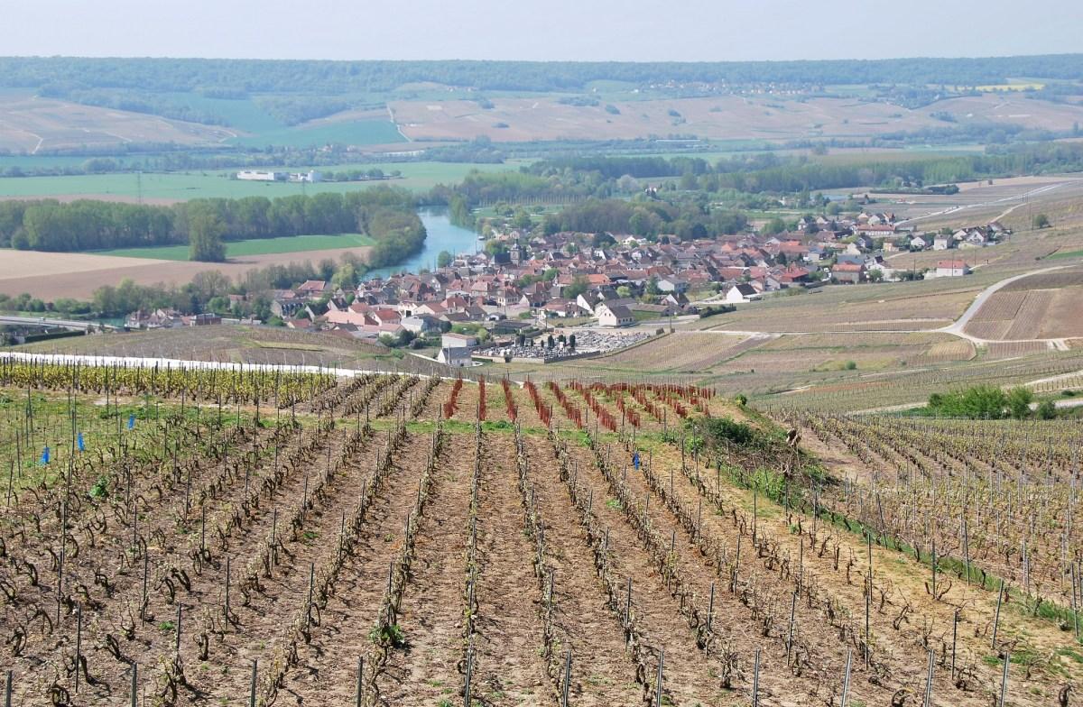Mes 5 incontournables pour visiter Reims et sa région