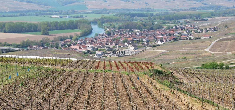 La vallée de la Marne depuis Hautvilliers