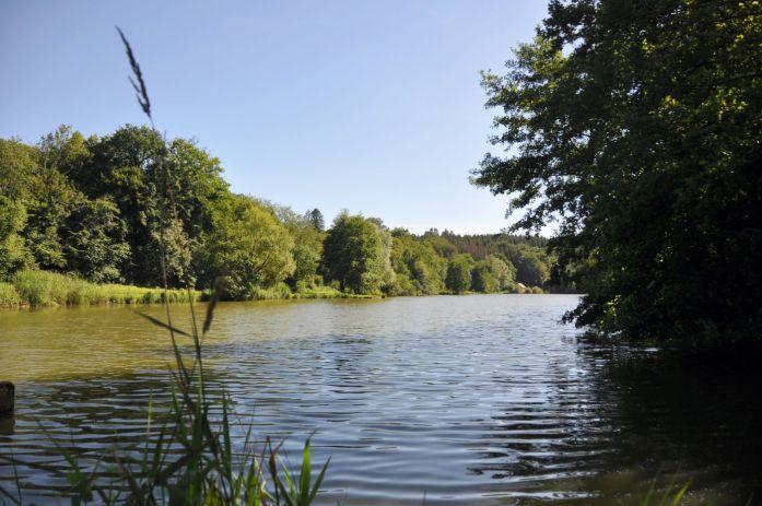 Etang des princes à Montbéliard - blog La Marinière en Voyage