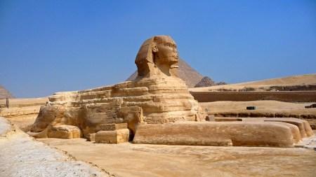 Sphinx lamascott
