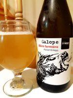 Galope de la Chouape