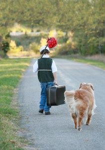 lost bigstock-Boy-Traveling-With-Dog-4895055