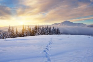 Winter landscape with sunrise in the mountains. The path in the