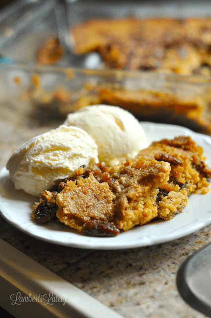 Pecan Pie Dump Cake...tastes like a mixture between a cake/crumble and a pecan pie. So good! Perfect when served warm with vanilla ice cream.