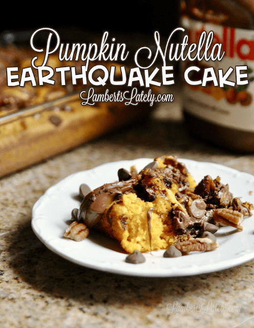 This Earthquake Cake recipe combines the flavors of pumpkin, Nutella, pecans, and chocolate. This looks like such a delicious and easy recipe!