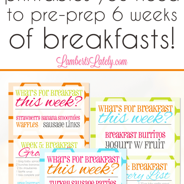 The Sunday Night Breakfast Project: 6 Weeks of Breakfast Prep Ideas & Printables!