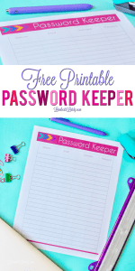 Ultimate Planning Notebook Add-On: Password Keeper Log