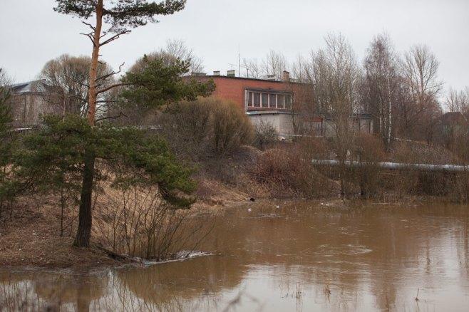 В Светогорске. Изображение № 25.