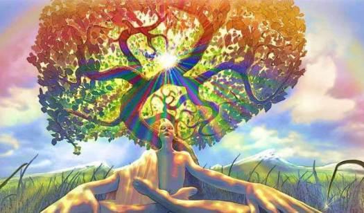 Hombre sentado al lado de un árbol experimentando una toma de conciencia