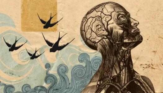 Figura con pájaros a su espalda representando la psicología humanista de Carl Rogers