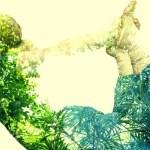 Yoga para principiantes: el arte de armonizar cuerpo y mente