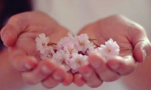 manos con flores representando la abundancia