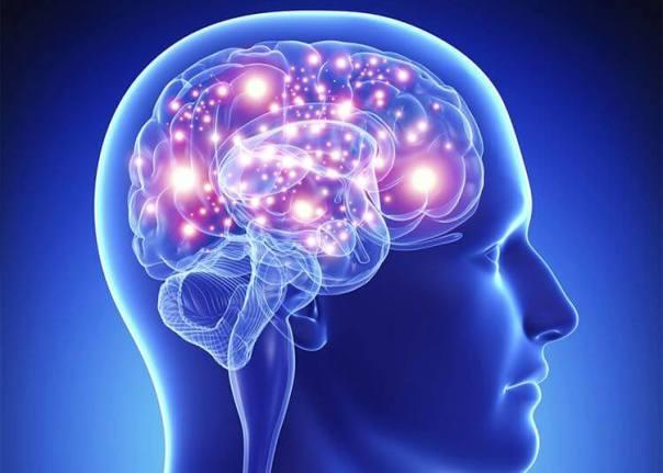 Neurotransmires producidos por la microbiota intestinal