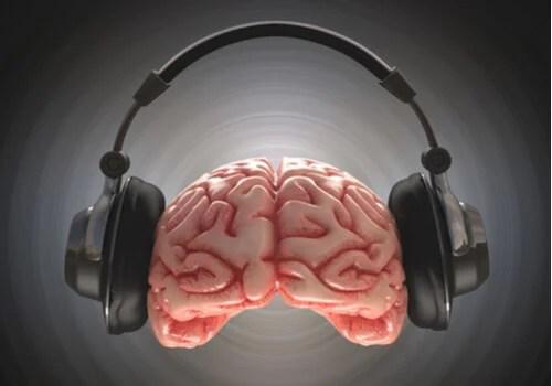 Cerebro con unos cascos escuchando música