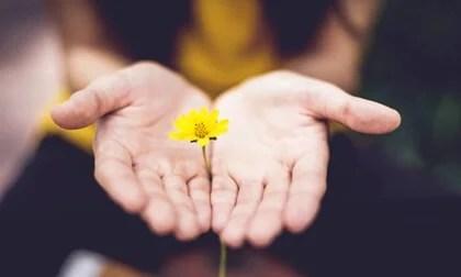 Mano con flores para representar el crecimiento postraumático