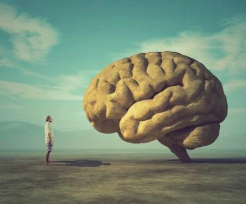Cerebro representando que no puedo concentrarme