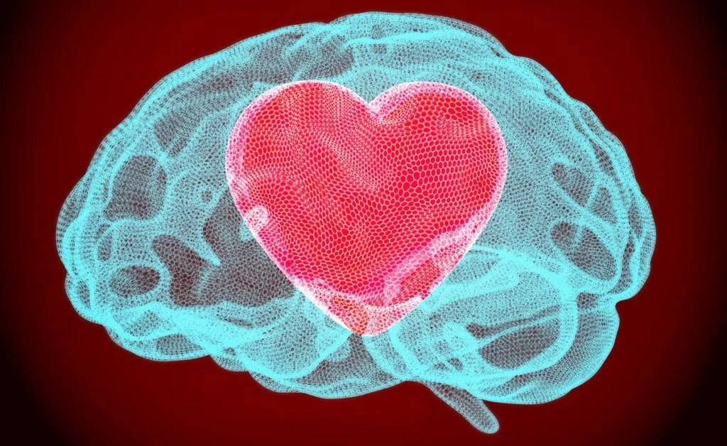 cerebro con corazón representando la bondad cognitiva