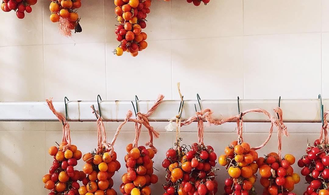 La Puglia e l'arte antica di conservare i pomodori appesi: la'nzerta