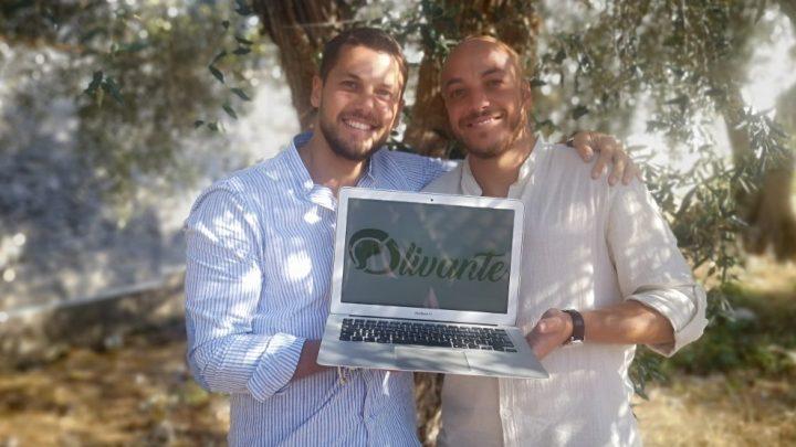 Vincitori Pin: Ecco spuntare Olivante – La nuova Start up foggiana