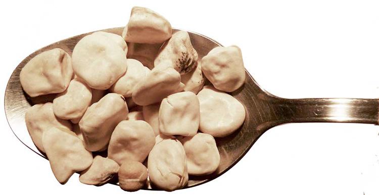 Cicerchia della Murgia: ricette e curiosità