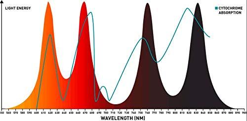Fire-Wave grafico