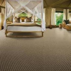 carpet1_300x300