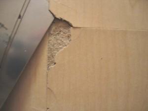 laminate flooring problems, Laminate Flooring Problems