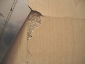 laminate flooring problems delaminating site related
