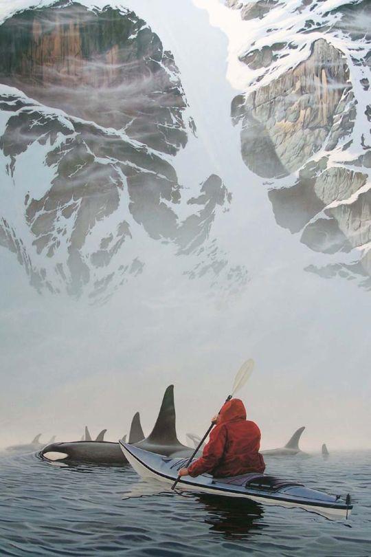 canada orques kayak