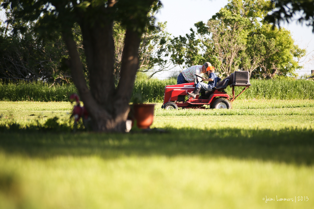 mowing-8431